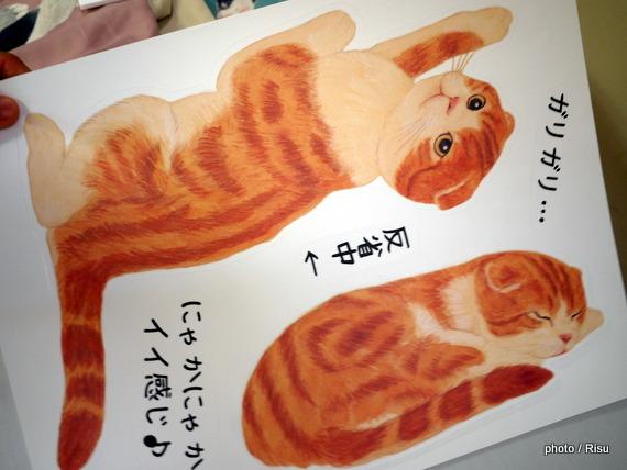 YOU+MORE! ガリガリつめ研ぎ跡を楽しく! 猫のウォールシール