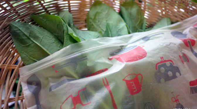 驚異の米ぬかパワー!ジップバッグで野菜は本当に鮮度を保てるか検証してみた。