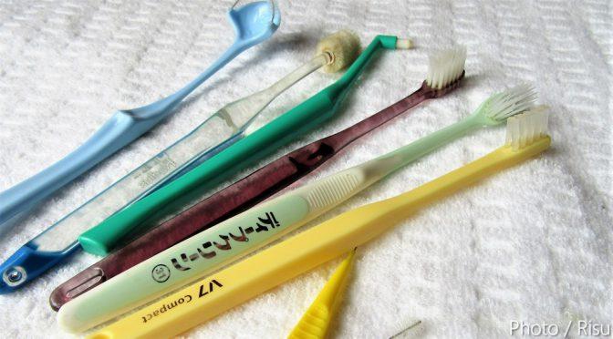 まるで楊枝!?歯周病の予防研究から生まれた歯ブラシ