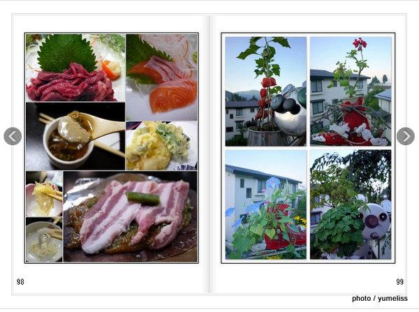 マイブックAutoAlbum - Mozilla Firefox 20140410 223351