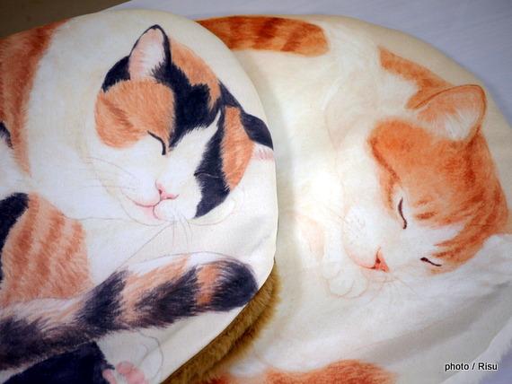 YOU+MORE! ひざの上でごろごろ 丸く眠る猫のクッションケース